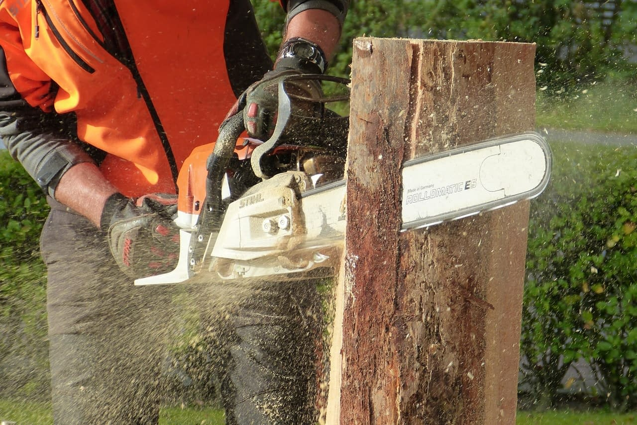 Best Cordless Chainsaw in 2020: Reviews & Buying Guide 1