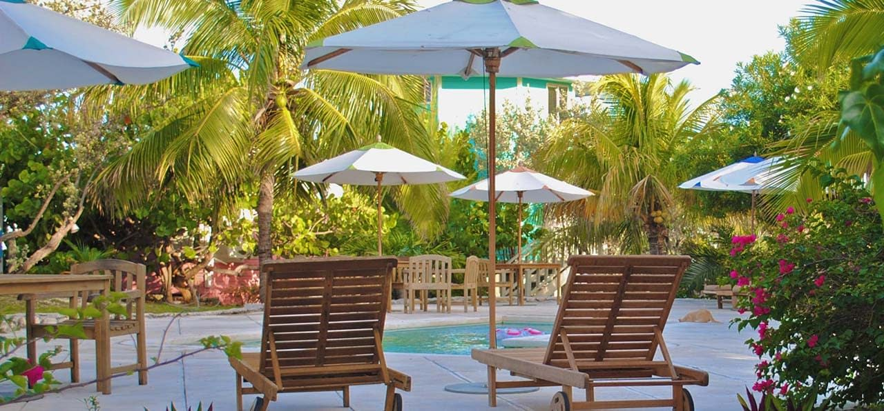 The Best Patio Umbrellas For Your Garden Or Backyard: Reviews & Buying Guide